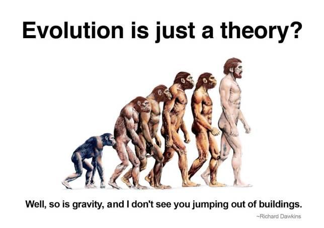 336677-evolution-richard-dawkins-quote-2