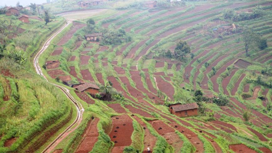 rwanda5
